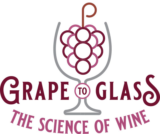 Grape to Glass: The Science of Wine