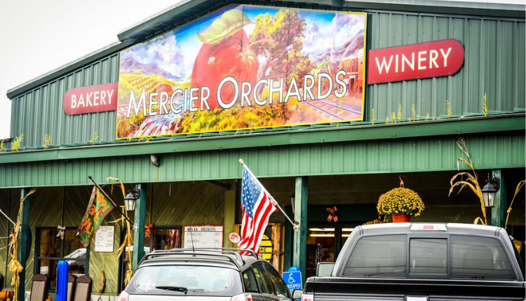 Exterior shot of Mercier Orchard's store.