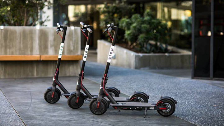 Three Bird scooters parked in a row